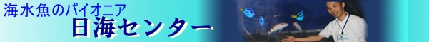 海水魚のパイオニア   日海センター (日海フィッシュコム)