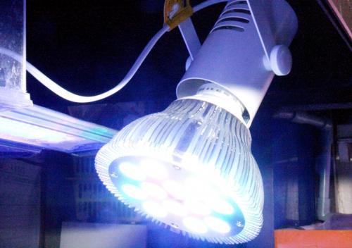 オリジナル配色LEDライトのイメージ